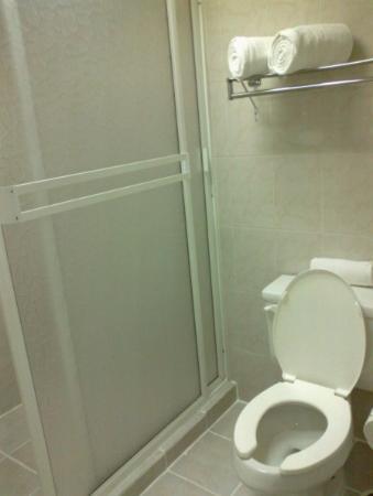 Hotel Fresno Galerias: Baño y toallas