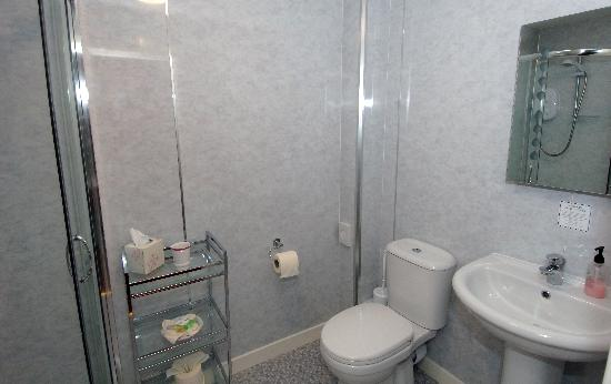 Foresters House Bed & Breakfast : Ensuite Bathroom