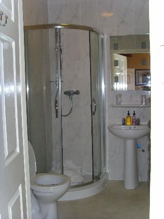 The Bourneville: Shower Room