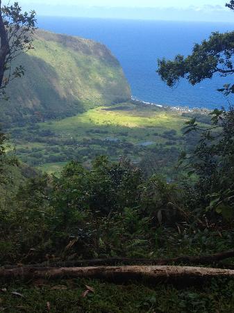Hawaiian Walkways: The rim of Waipi 'o Valley.