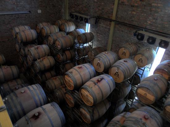 Uva Mira Mountain Vineyards: der Weinkeller