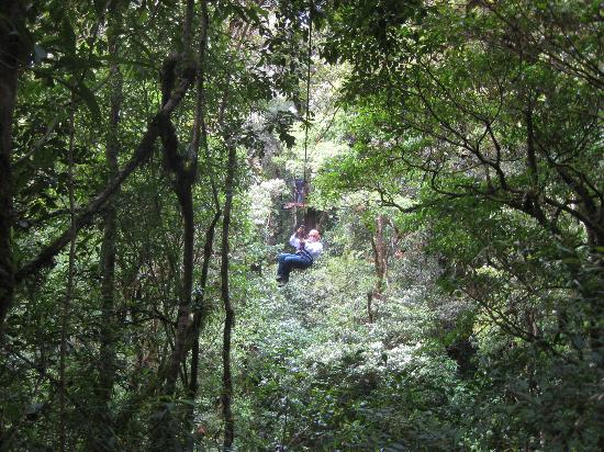 Canopy Adventure Barva Volcano: Zipping through the trees