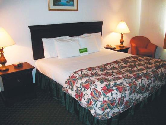 Olmito, TX : Guest Room