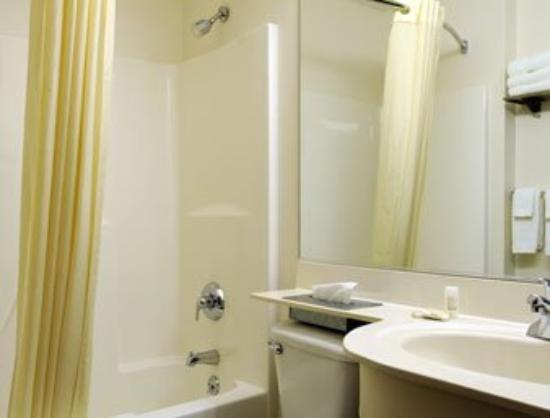 Microtel Inn & Suites by Wyndham Seneca Falls: Bathroom