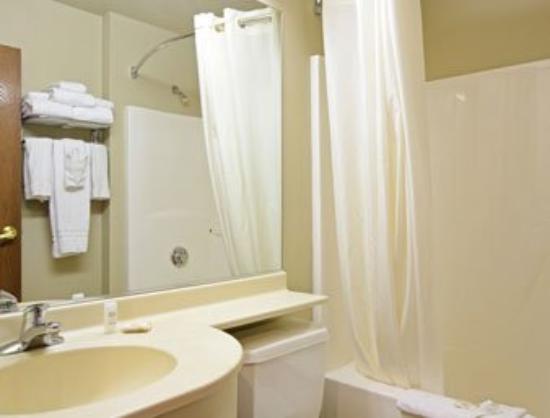 Microtel Inn & Suites by Wyndham Rapid City: Bathroom