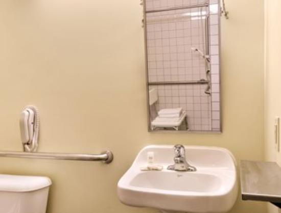 Microtel Inn & Suites by Wyndham Manistee: Accessible Bathroom