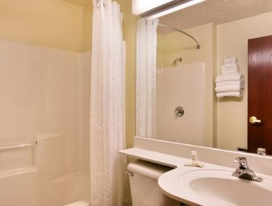 Microtel Inn & Suites by Wyndham Manistee: Bathroom