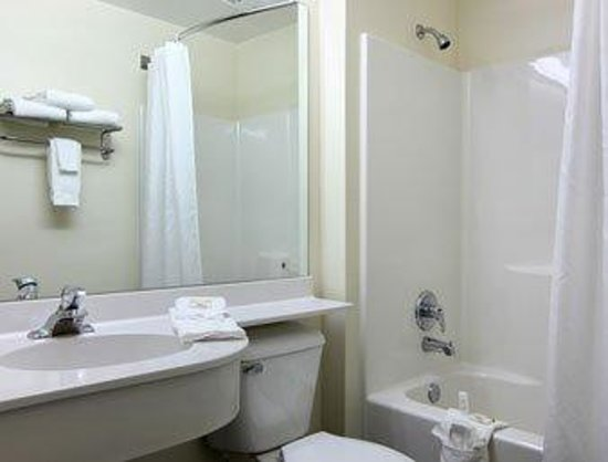 Microtel Inn & Suites by Wyndham Robbinsville: Standard Bathroom