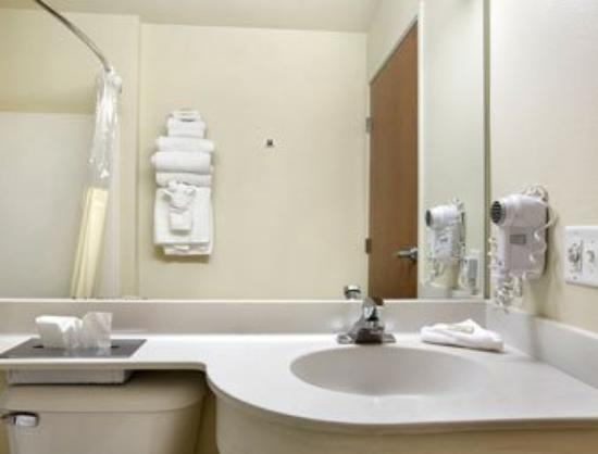 Microtel Inn & Suites by Wyndham Bozeman: Bathroom