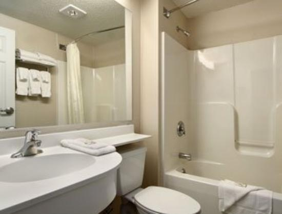 Microtel Inn & Suites by Wyndham Hamburg : Bathroom