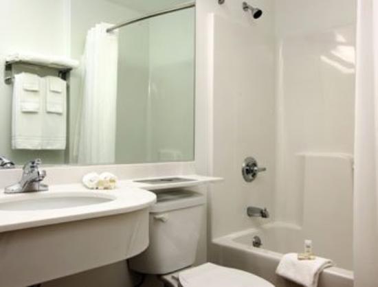 Microtel Inn & Suites by Wyndham Beckley East : Bathroom