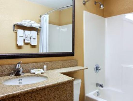 Microtel Inn & Suites by Wyndham Raleigh: Bathroom