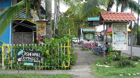 Puerto Viejo Beach : Cute street scene near the beach