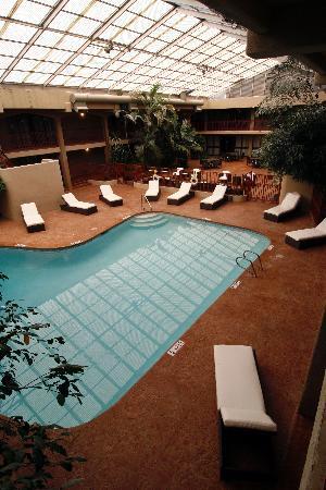 Hotel Cascada : Indoor Atrium Pool