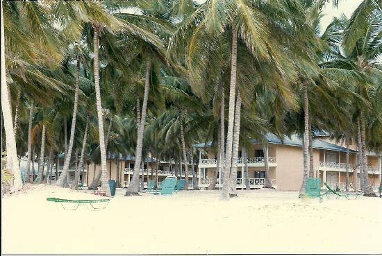 Punta Cana, Dominican Republic: Looking towards the rooms.