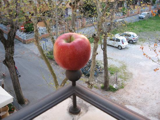 Hotel Accademia: Having fruit on patio