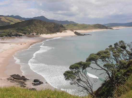 Whangarei Heads Photo