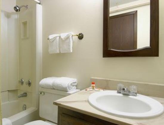 Super 8 Rochester/Fairgrounds Area: Bathroom