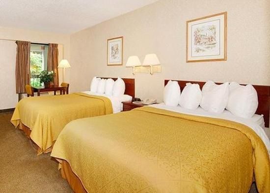 Quality Inn Tanglewood: Guest Room