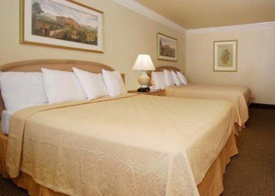 Quality Inn & Suites Vacaville: Guest Room