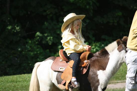 East Silent Lake Resort: Horses!