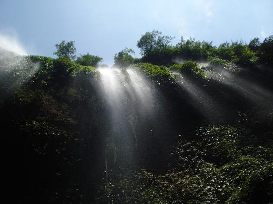 Madakaripura Waterfall : nice but expensive