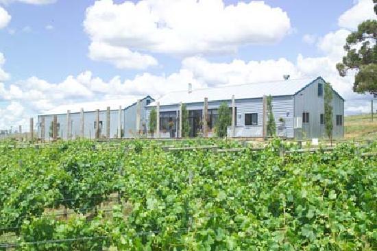 Kyneton Ridge Estate B&B: Our vines and cellar door