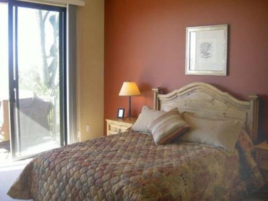 Specialty Lodging Lux Condos: Guest Room