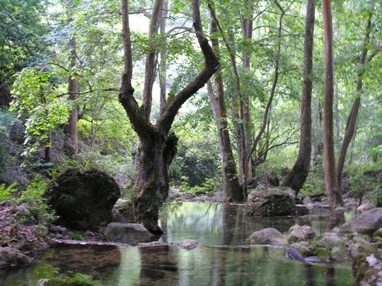Queretaro, Meksyk: Cascadas