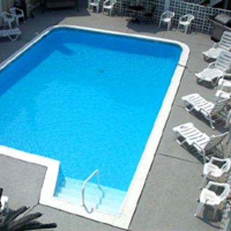 Desert Palm Inn: Pool View