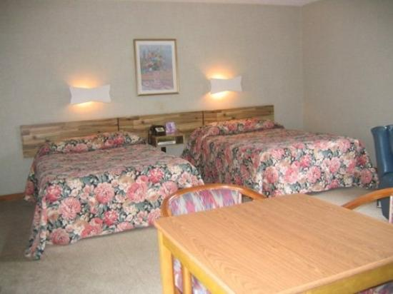 Town and Country Motor Inn: Guest room