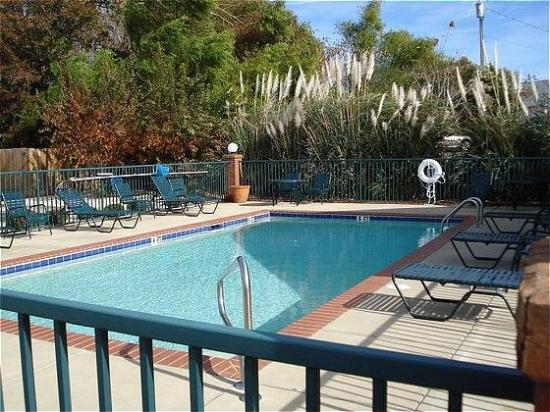 Prattville Extended Stay Hotel : Pool View