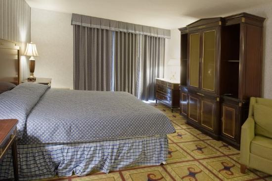 The Springs Inn : King Suite