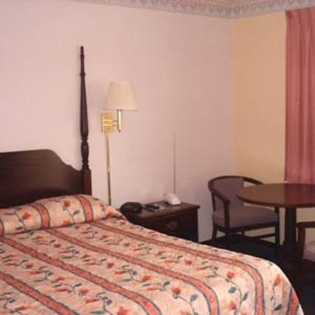 Pottsville Motor Inn: The Hotel