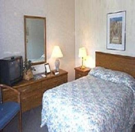 Oakdell Motel: Guest Room