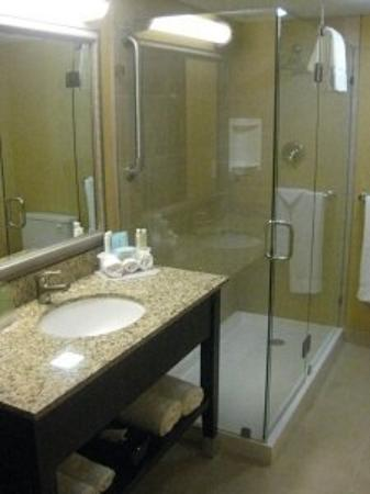 Holiday Inn Express and Suites Fort Lauderdale Executive Airport : Bathroom