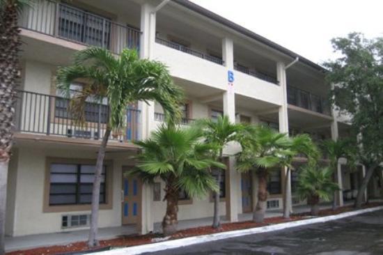 Homing Inn: Premises IMG