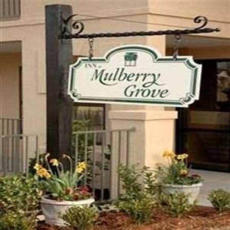 Inn at Mulberry Grove: Exterior