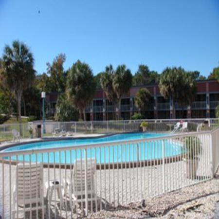 Bella Oasis Hotel: Pool
