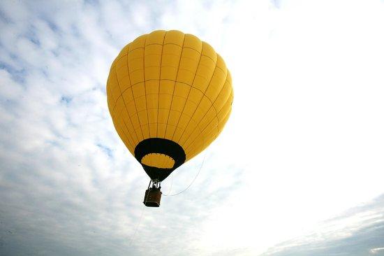 Montgolfieres de Falaise : montgolfiere de falaise