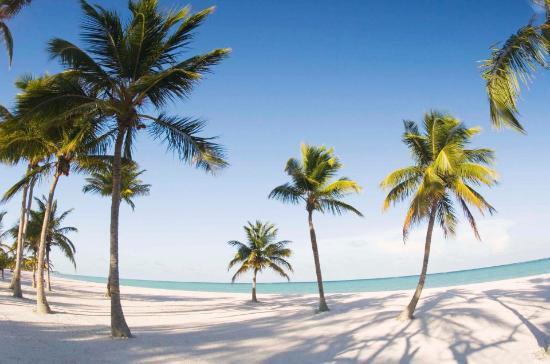 Негомбо, Шри-Ланка: negombo beach