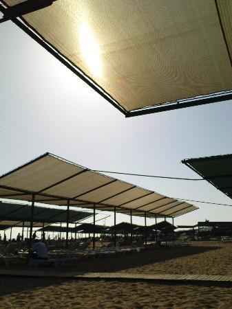 Seher Sun Beach Hotel: the sun shades on the beautiful beach!
