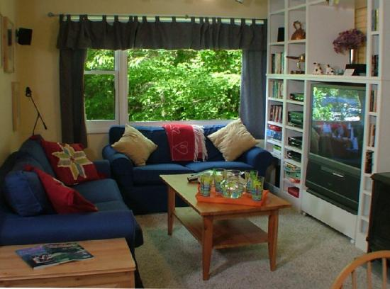 Mountainside Resort At Stowe: Three bedroom - Living room