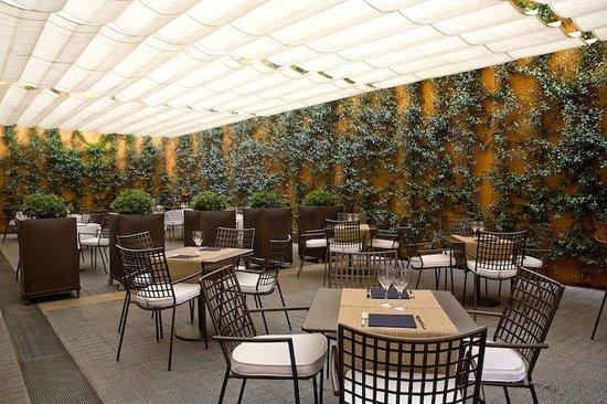 Terraza Del Restaurante El Café Del Gallery Picture Of