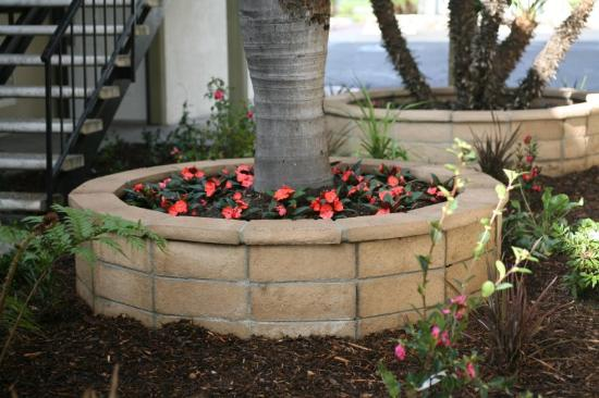 Key Inn: Our Beautiful Courtyard