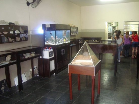 Museu de Ciências Naturais Joias da Natureza