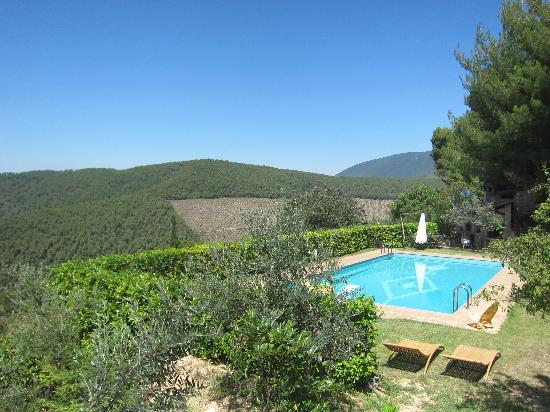 Agriturismo Istrice Innamorato: view of the pool.