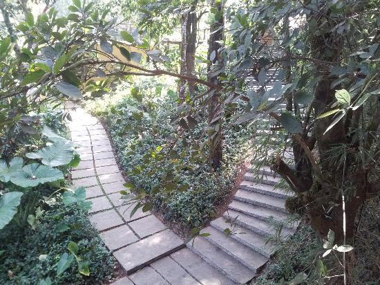 Club Mahindra Madikeri, Coorg: One of the many walkways