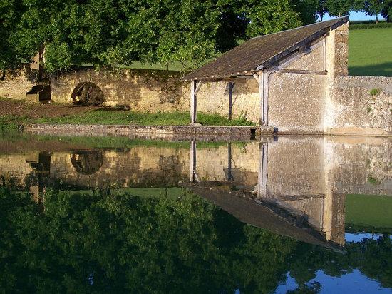 Domaine de Dremont : Le bassin