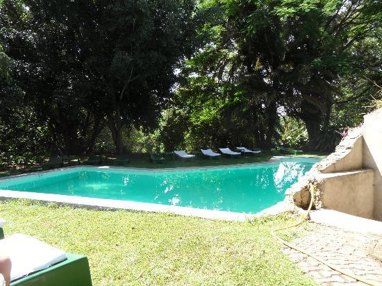 Dik Dik Hotel: The Pool